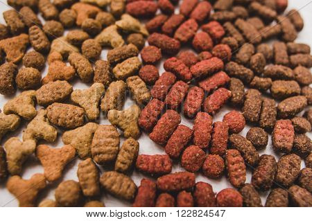 Dry Cat Food
