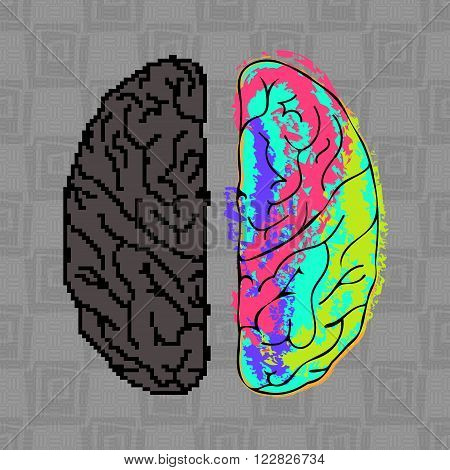 Differences between the hemispheres of the brain. EPS10