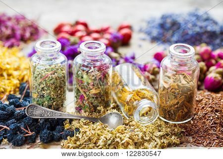 Bottles of healing herbs and herbal tea assortment poster