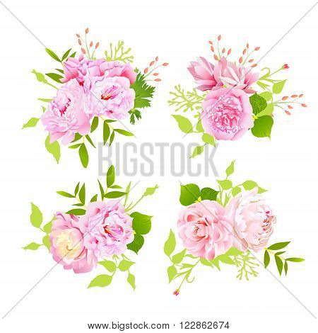 Sweet pink peonies bouquets vector design elements in shabby chic style.