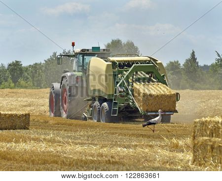 Combine harvester work on a wheat field