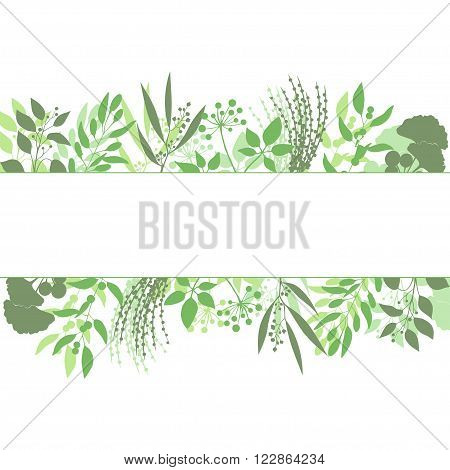 Green rectangle frame with collection of plants and herbs. Silhouette of branches isolated on white background. Vector illustration