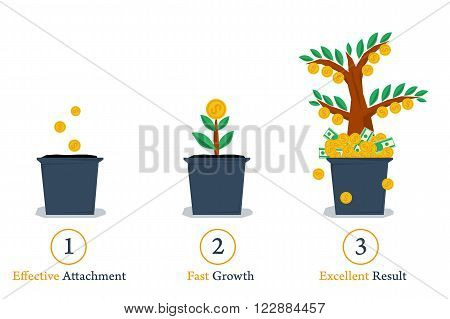 Vector isolated web infographic steps of successful business growth. Money tree in pot. Planting, growth and result. Three points for financial concept in flat style.