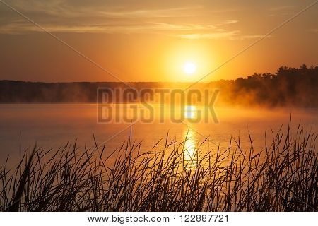 Sunrise on the lake. Early morning landscape. mist on the water forest silhouettes and the rays of the rising sun.