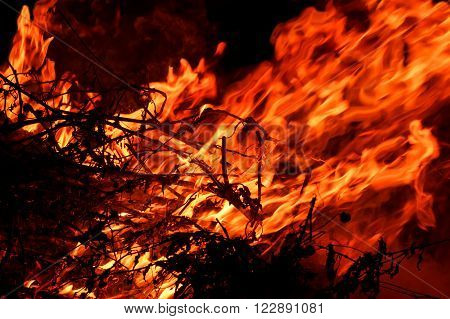red hot blazing fire on black background (the concept of risk of forest fires)