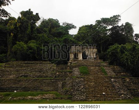 Several Mayan pyramids and staircases at the Palenque archeological site of Chiapas Mexico covered in jungle.