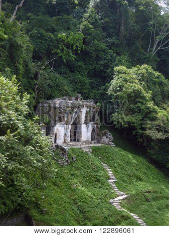 A small Mayan temple on a hill between dense jungle at the Palenque archeological site of Chiapas Mexico.