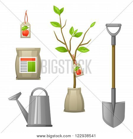 Set of seedling fruit tree, shovel, fertilizers and watering can. Illustration for agricultural booklets, flyers garden.