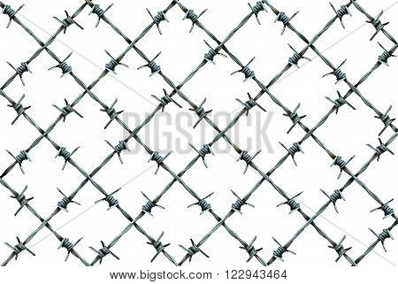 Barbed wire fence pattern isolated on a white background as metal wire with sharp spikes as a security and danger metaphor for incarceration and brutality symbol or protection icon.