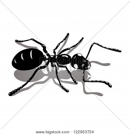 Isolated illustration black ant icon vector image