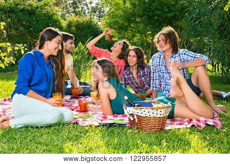 Small group of happy friends relaxing on a red and white checkered blanket eating grapes and having drinks next to picnic basket