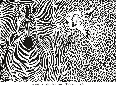 vector illustration pattern background cheetah and zebra skins