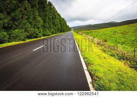 Road in Flores island Azores Portugal .