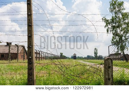 Auschwitz II - Birkenau, path from rail ramp to women's barracks at Sector Ia and Sector Ib