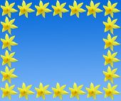 Repetitive border pattern of daffodils on blue poster