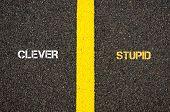 Antonym concept of CLEVER versus STUPID written over tarmac road marking yellow paint separating line between words poster
