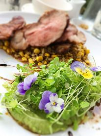 Mixed greens, sprouts, blue flowers, pureed peas, corn, steak, with balsamic vinegar drizzle on whit