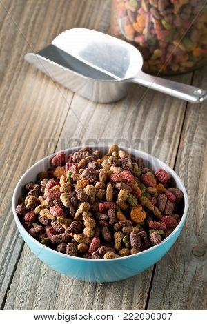 Heap of dry pet food in blue plastic bowl on rustic wooden floor with metal scoop and storage jar