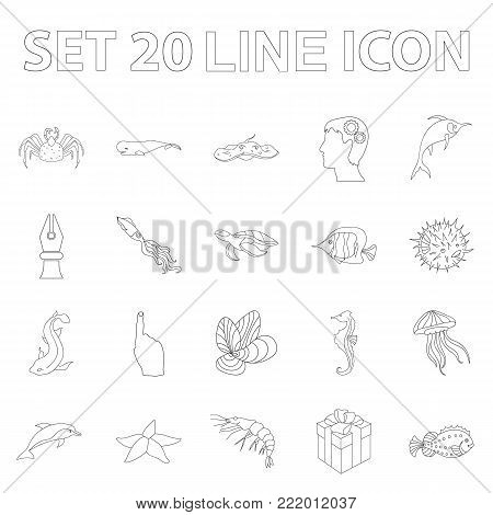 A variety of marine animals outline icons in set collection for design. Fish and shellfish vector symbol stock  illustration.