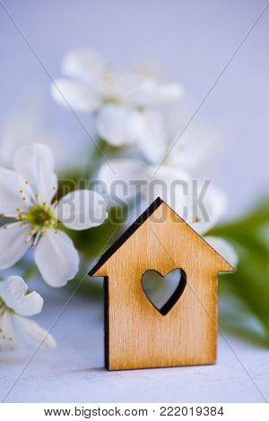 Wooden house with hole in form of heart surrounded by white flowering apricot branches on blue background. Spring composition.