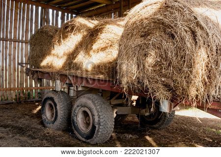 Old cart with sunlit round bales of hay in old wooden rustic barn.