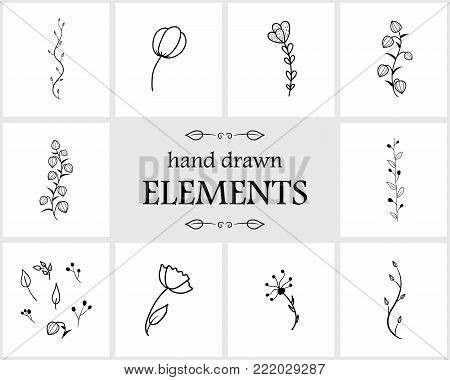 Hand drawn floral logo elements and icons. Hand drawn decorative vector flower design. Cute flowers for your branding. This collection can be used for creating logos, business cards, postcards, wedding invitations