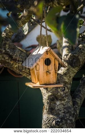 Little wooden bird house hanging on a tree branch