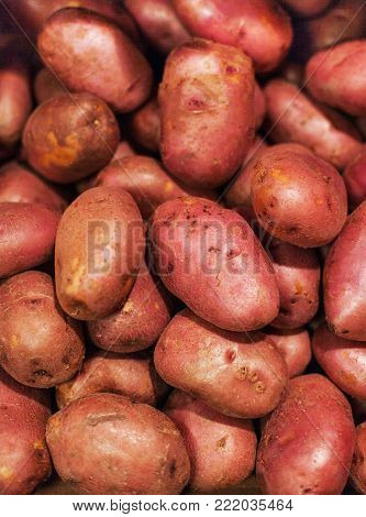 Raw potatoes,  food background. Fresh potatoes Raw Organic red  Potatoes in grocery store