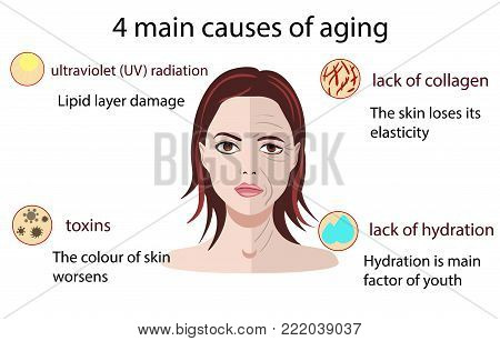 Causes of aging, vector illustration aging process and small pictures isolated on the white backgroind