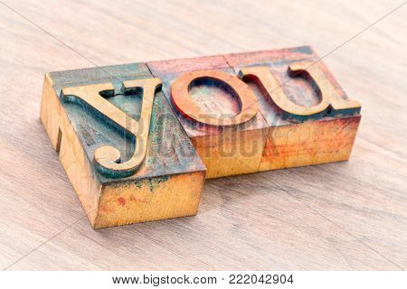 you word abstract- text in vintage  letterpress wood type printing blocks stained by color inks