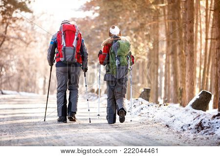 Back view of mountaineers while walking at winter
