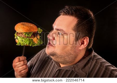 Diet failure of fat man eating fast food. Overweight person eating huge hamburger on fork. Junk meal leads to obesity. Man studies quality of product before eating.