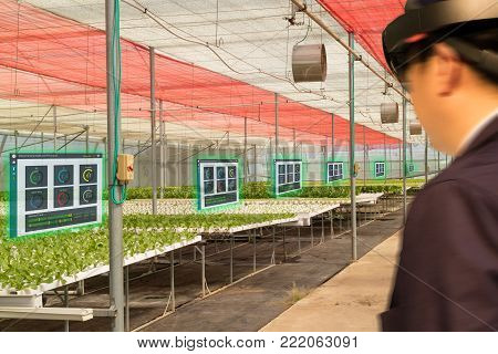 iot smart industry robot 4.0 agriculture concept,agronomist,farmer(blurred) using smart glasses (augmented mixed virtual reality,artificial intelligence technology) to monitoring,control in farm