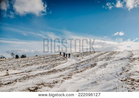 Five people climb on foot with skis, goes through snow, because of the bad road. On background forest and ski slopes. Close up. Winter nature. Group of ski-mountaineers competitions.