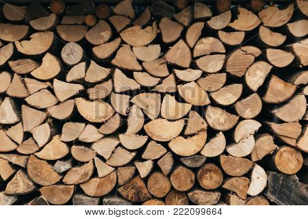 Firewood. Log of timber.