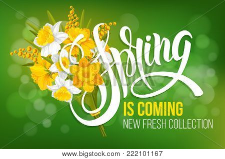 Unusual calligraphic inscription Spring is coming with spring flowers - bouquet of daffodils and mimosa. Conceptual vector illustration for advertising new product or announcement other events.