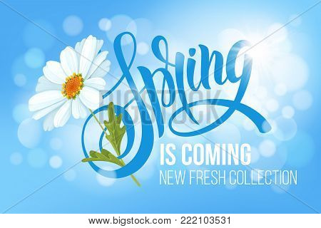 Unusual calligraphic inscription Spring is coming with spring flower - blooming white daisy. Conceptual vector illustration for advertising new product or announcement other events.