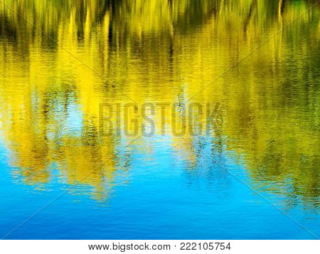 Bright Autumn Water Background Reflecting Yellow And Green Trees In The Water. Clear Water. As Brigh