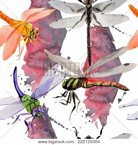 Exotic dragonfly wild insect pattern in a watercolor style. Full name of the insect: dragonfly. Aquarelle wild insect for background, texture, wrapper pattern or tattoo.