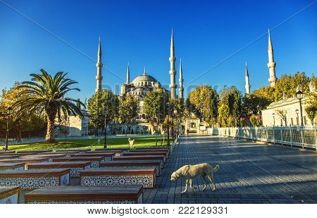 View of Sultanahmet square with the Sultanahmet mosque early in a morning