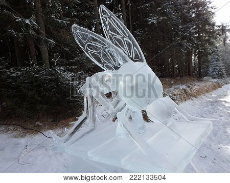 High Tatras, Slovakia, January 15 2018, Sculptures made of ice - mosquito,