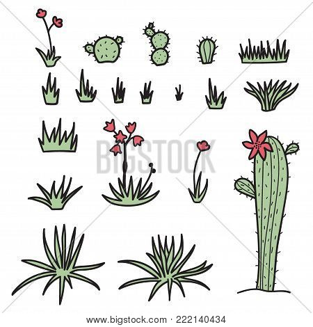 Set of vector illustration of plants in desert. Isolated outline hand drawn cartoon flowers, grass, yucca, cactus. Drawing for print, fabric