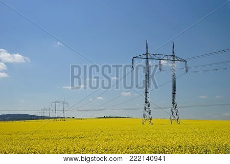 Yellow Rape Field And High-voltage Power Lines. Mountains At Background.