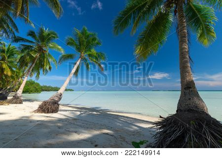 Paradise deserted tropical beach of Ohoidertawun, Kei Kecil island, Maluku, Indonesia