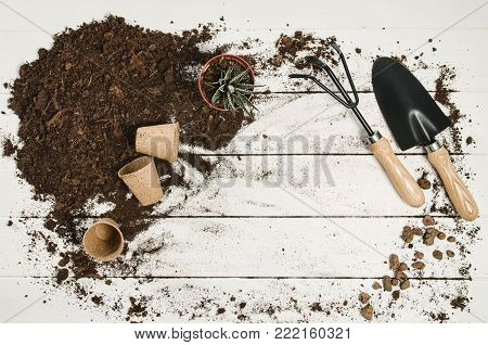 Gardening tools top view on white wooden planks background with copy space around products. Border with place for text. Gardening or planting concept seen from above. Working in a clean indoor garden.