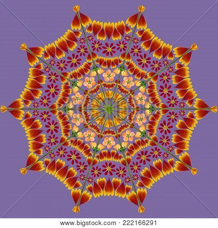 Natural mandala from dried pressed flowers, petals and leaves. Mandala is symbol of meditation, Buddhism, Hinduism, yoga. Geometric mandala drawing made by plants on ultra-violet background.