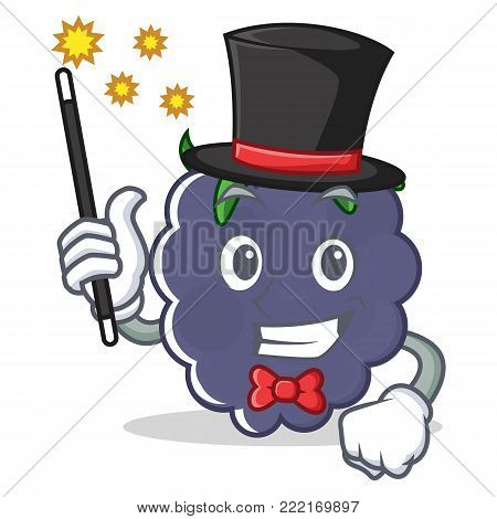 Magician blackberry mascot cartoon style vector illustration