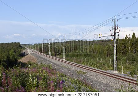 The Bothnia Line Nyland to Umea, Sweden.  Modern, newly built High-speed railway. Sunny morning in July.