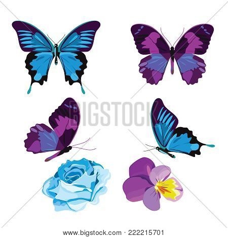 Set collection of blue and violet butterflies and flowers isolated on white background. Vector illustration.
