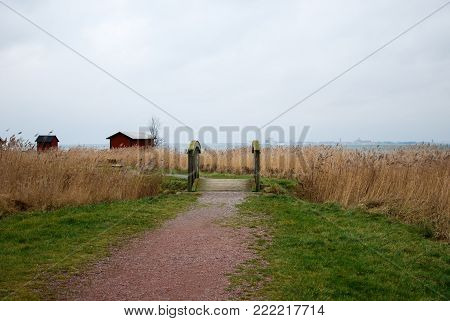 Footpath through the reeds at the swedish island Oland